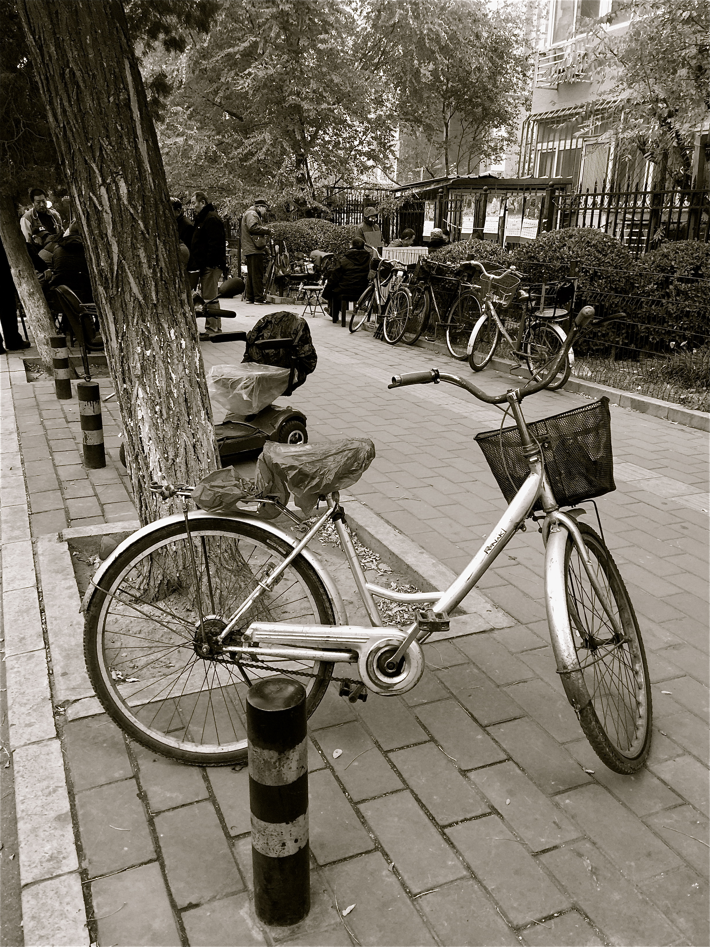 Bicycle, Dongcheng