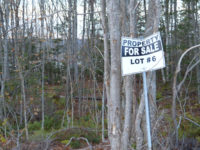 What's for Sale In Ben Eoin?