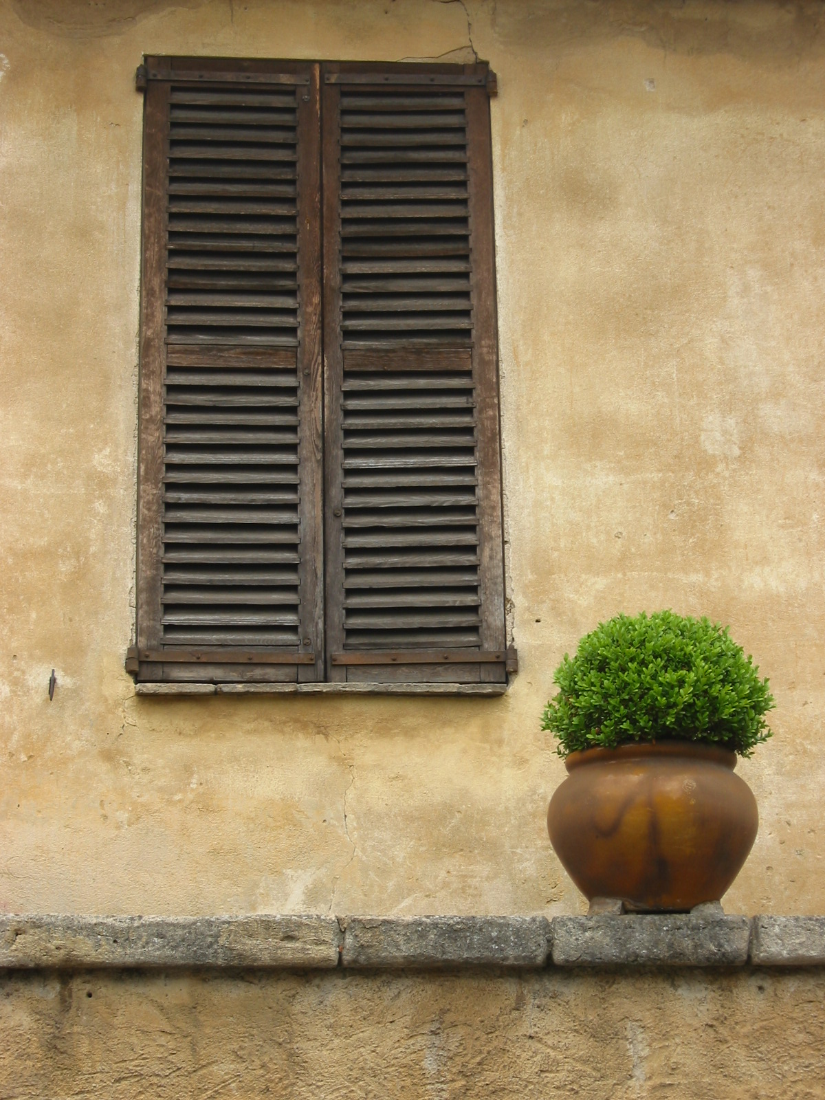 Provence JM Terio, http://www.freeimages.com/photographer/terio-44102