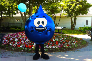 Tappy, the CBRM's Water Drop Mascot.