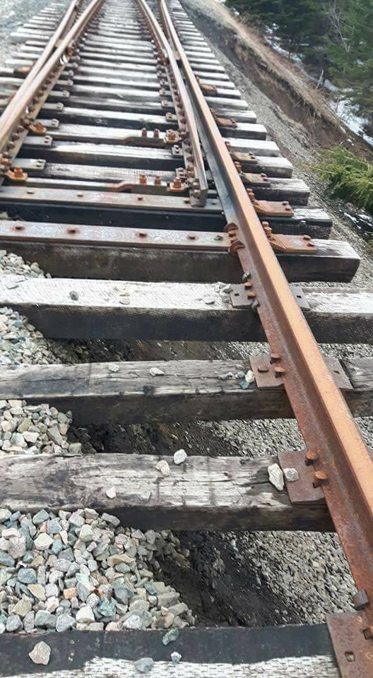 CBNS tracks near Point Edward. (Photo via Cape Breton Railway Victims Association)