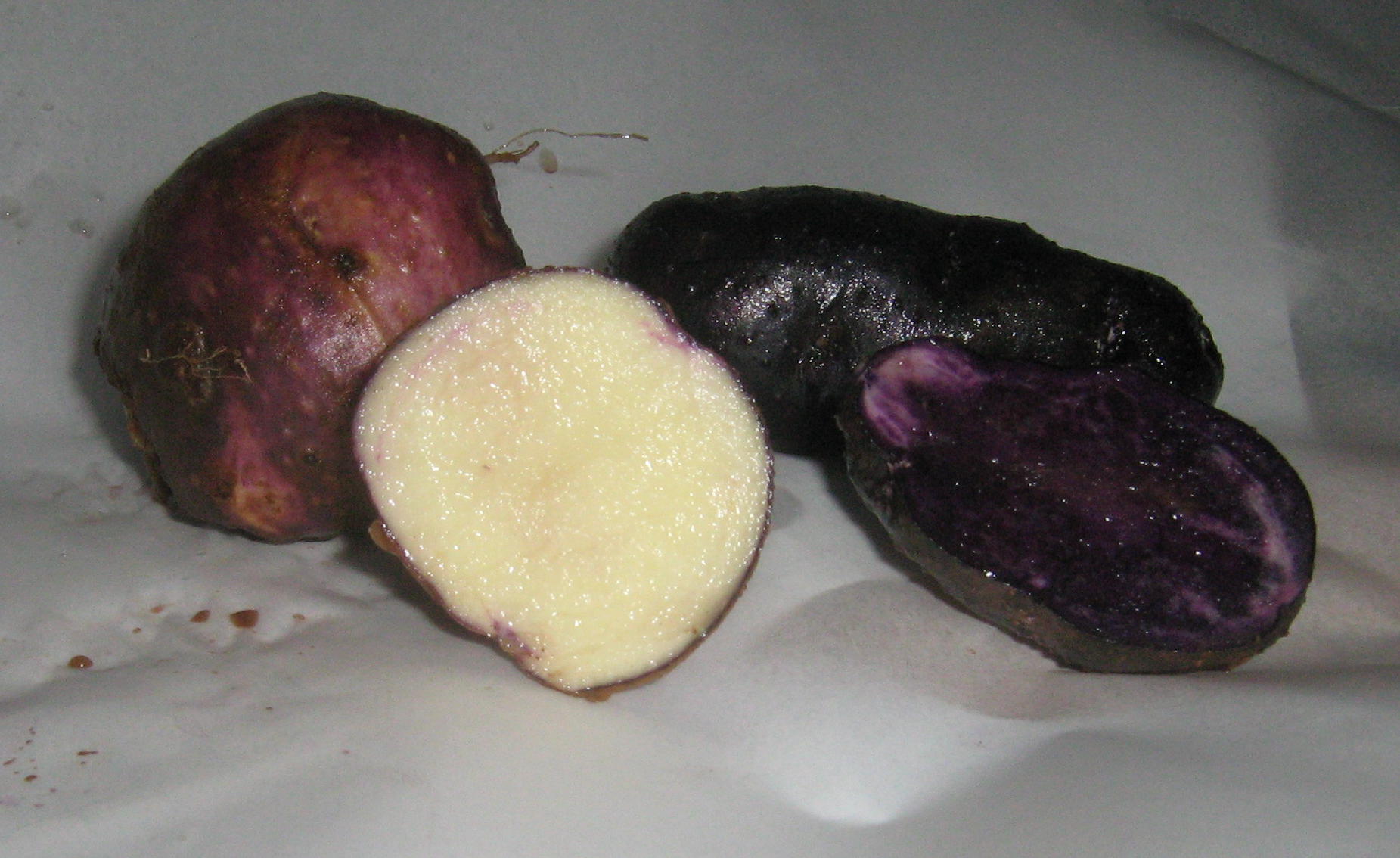 The Cape Breton Bluenose and Peruvian Purple potatoes. (Photo by Michelle Smith)