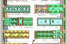 Gardening Tips Week 1: Planning Your Plot