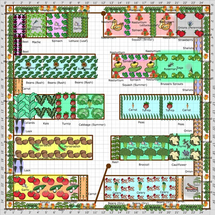 Kitchen Garden Planner: Gardening Tips Week 1: Planning Your Plot