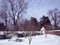 George Washington's garden at Mount Vernon in winter. (Photo by Carol M. Highsmith, Public Domain, via Wikimedia Commons)