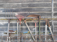 Garden tools rack. (Photo by Dereckson, CC BY 4.0, https://creativecommons.org/licenses/by/4.0, from Wikimedia Commons)