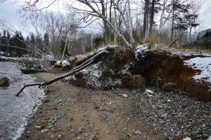 Shoreline erosion, Malagawatch, CB. (Source: ACAP Cape Breton Malagawatch Shoreline Preservation Project http://www.acapcb.ns.ca/single-post/2017/09/12/Malagawatch-Shoreline-Preservation-Project)