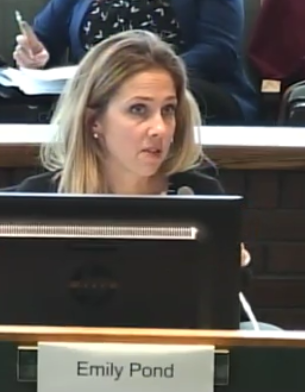 Emily Pond, NS Department of Municipal Affairs, during 7 January 2019 L&O Committee meeting.