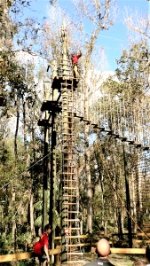 The adventure course while in operation by TreeUmph!