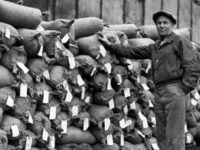 An unidentified man stands by stacks of pitchblende concentrate awaiting shipment at Port Radium in 1939. Photo: Richard Finnie via NWT Archives https://www.nwttimeline.ca/1925/Popups/photo3_eldorado.htm