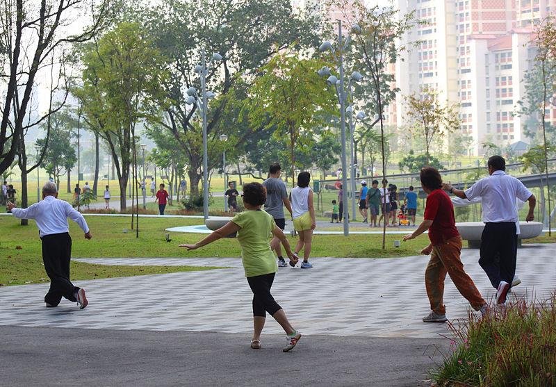 Tai Chi in Bishan Park