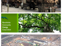 District Energy Part II: Biomass? Seriously?