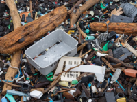 Beach garbage, Hawaii. (Photo by Justin Dolske from Cupertino, USA / CC BY-SA https://creativecommons.org/licenses/by-sa/2.0 )