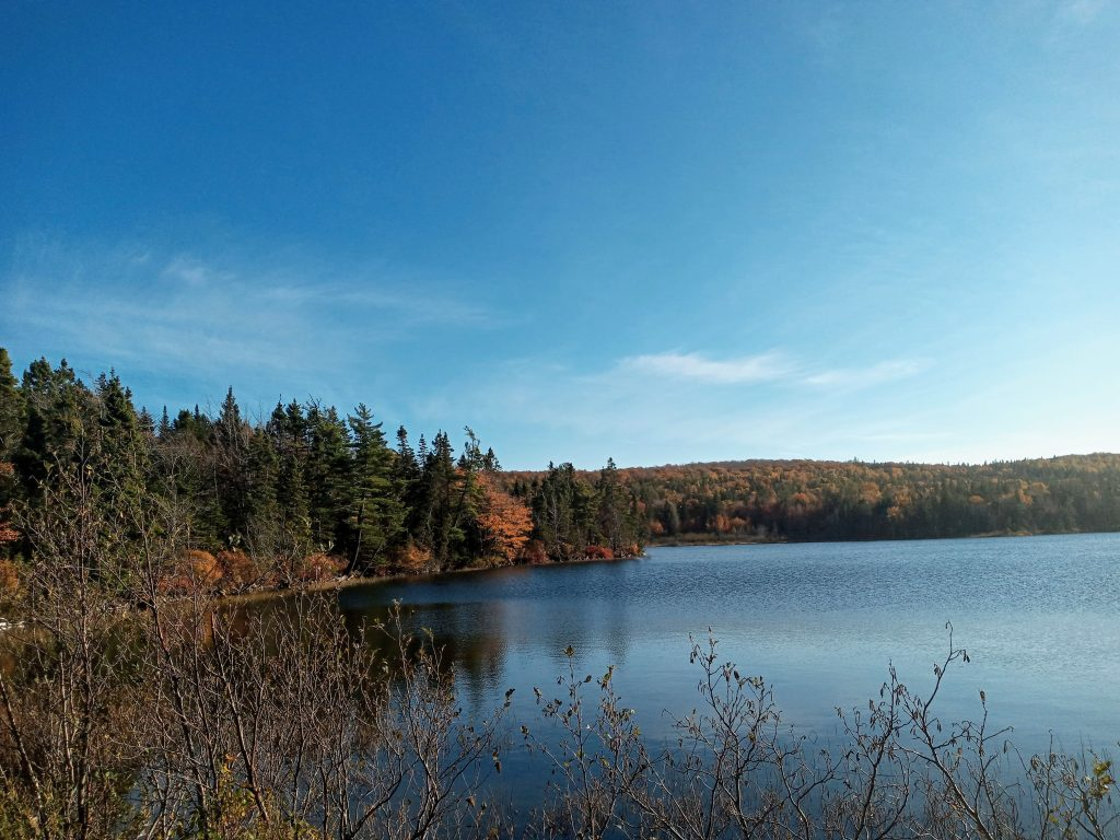 MacAdam's Lake. 19 October 2020